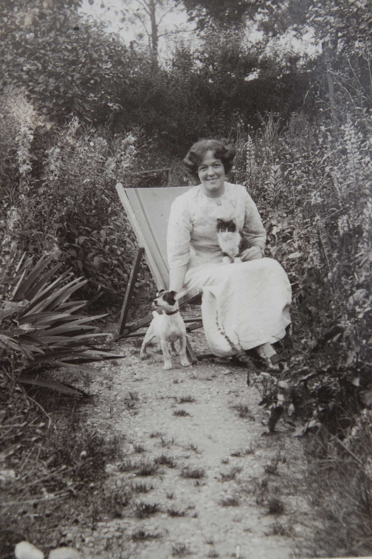 Hilda + dog and cat - date unknown - Image Credit Lesley Cain, Jane Wood & Lauren Hall ( Great, Great / Great Nieces )
